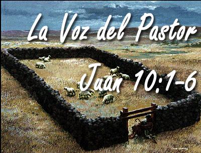La Voz del Pastor copy