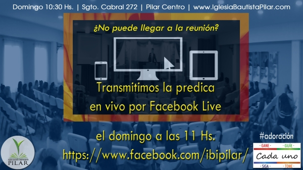 transmisión en vivo copy